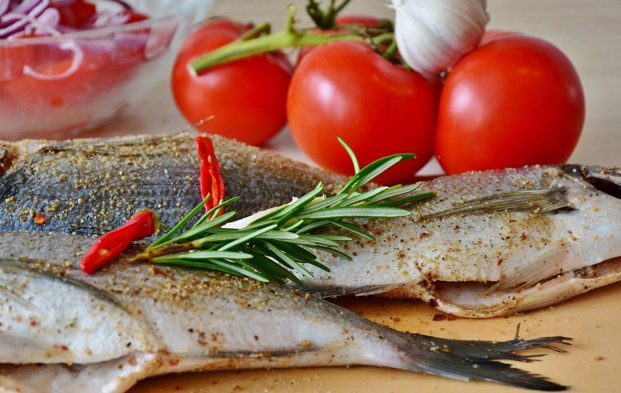 fish-3483452_1280